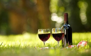 Shiraz-Wines