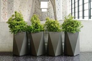 modern planters indoor
